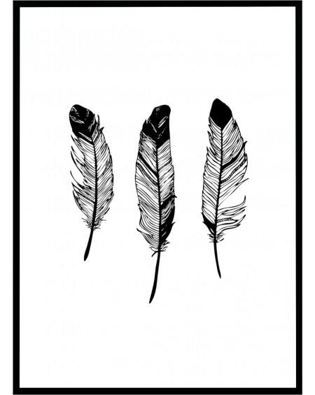 Plakat w ramie Feathers 50x70