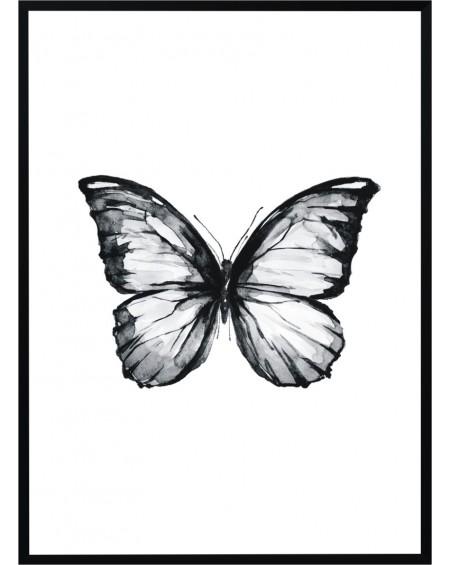 Plakat w ramie Butterfly I 5070