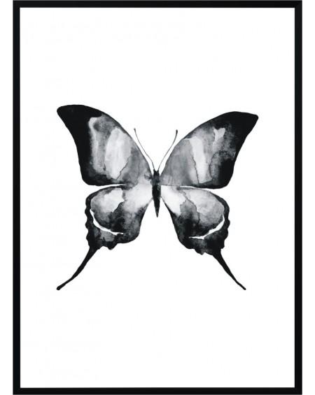 Plakat w ramie Butterfly II 50x70
