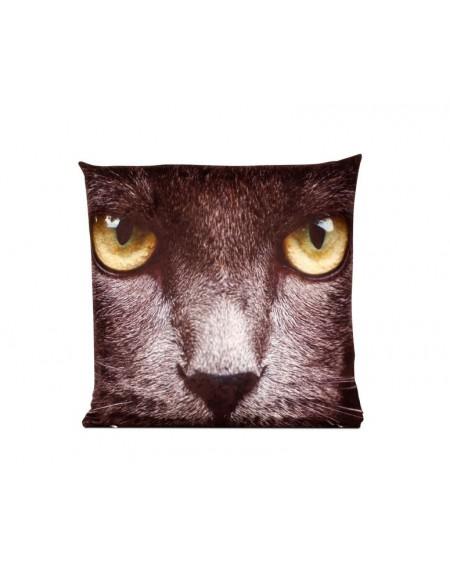 Poduszka Black cat