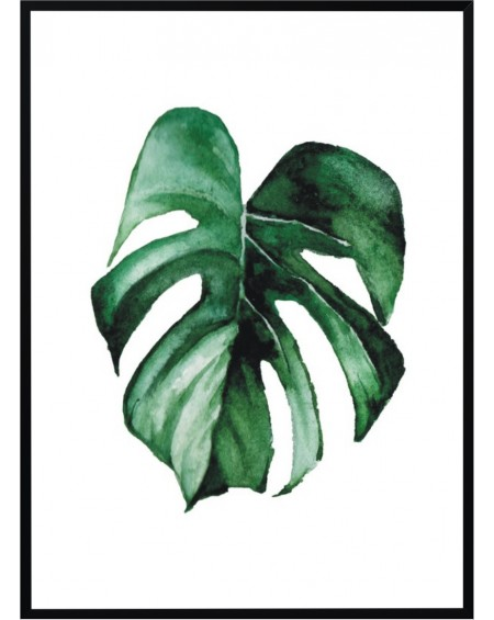 Plakat w ramie Monstera 50x70