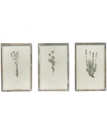 Obrazek 3 szt. Rośliny