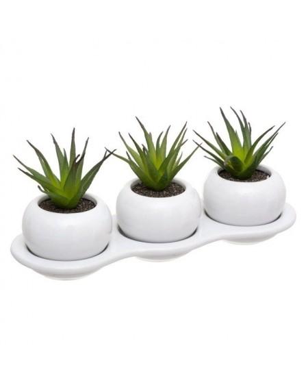 Komplet sztucznych roślin SUKULENT
