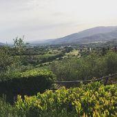 Toskania- miłość od pierwszego wejrzenia ❤️ Marzyłam od dawna, żeby tu przyjechać (dodatkowo po filmie Pod Słońcem Toskanii ☺️) i udało się z całą rodziną 😍 #toscana #tuscany #toskania